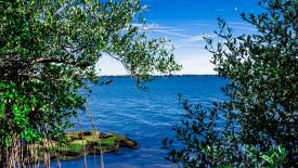 downloadable desktop background river scene